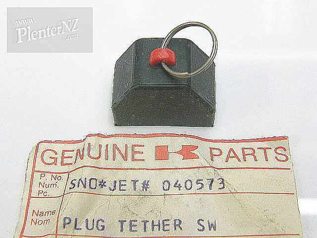 040573 - PLUG-TETHER SWITCH