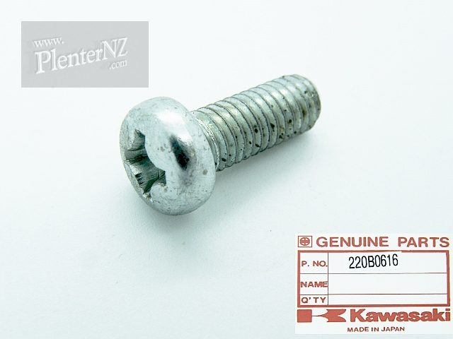 220B0616 Screw, Pan Head