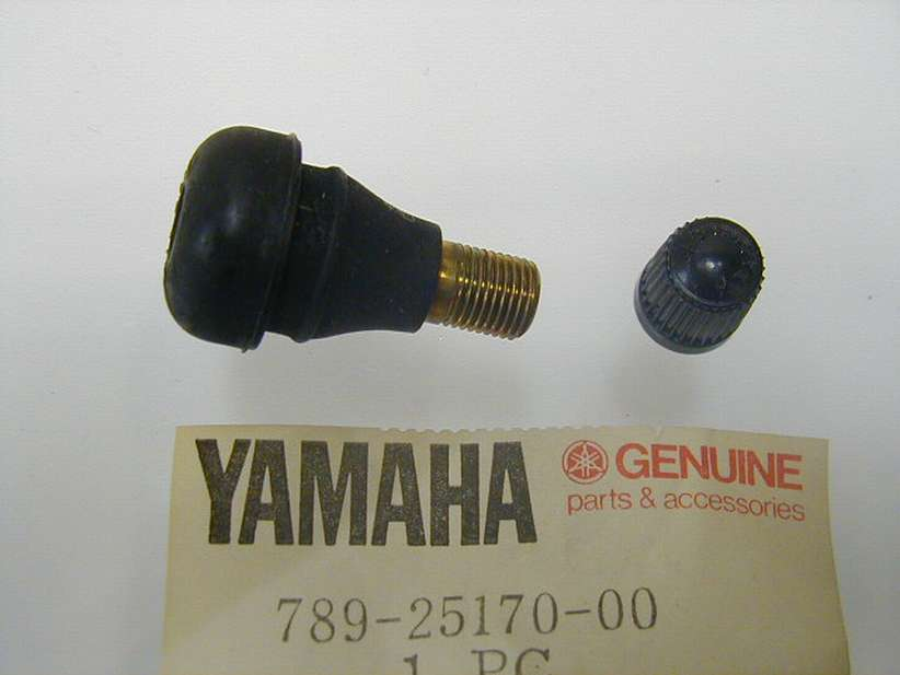 789-25170-00-00 - AIR VALVE ASSEMBLY